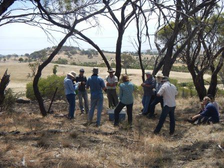 Direct Seeding revegetation field day 2015