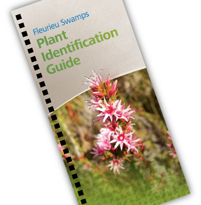 Fleurieu Swamps Plant ID guide