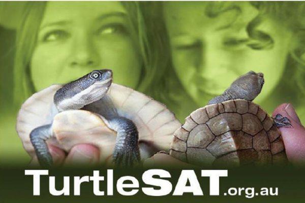 TurtleSAT.org.au
