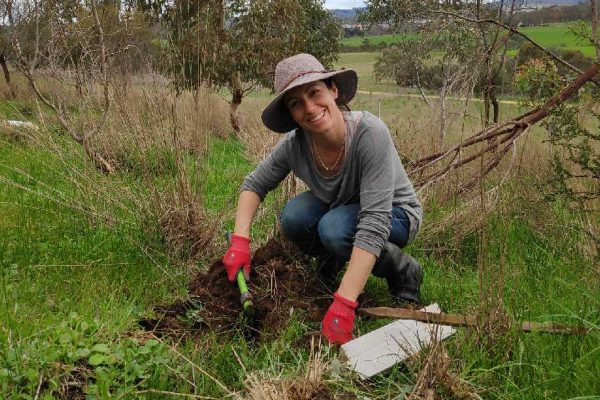 Janet kneeling in grass, digging a hole to plant a tree